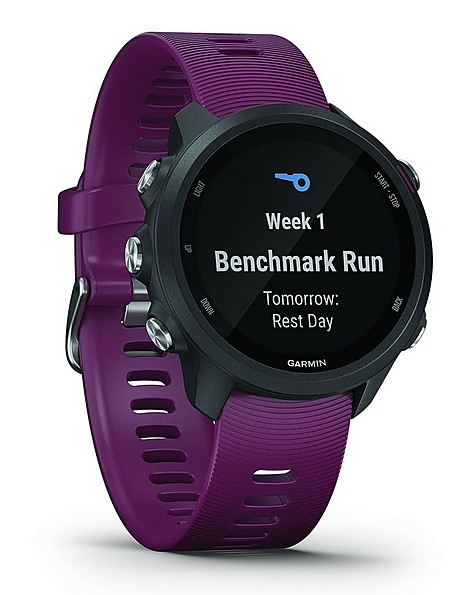 Garmin Forerunner 245 Fitness Watch -  berry