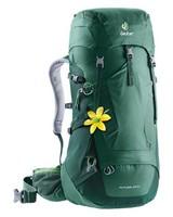 Deuter Futura 28 SL Hiking Pack -  darkgreen