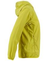 Rare Earth Women's Aster Jacket -  green