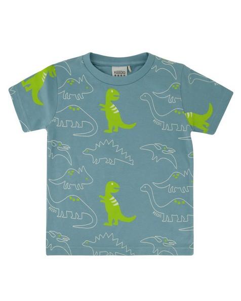Boys Neon Dino PJ Set -  duck-egg