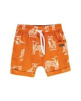 Baby Boys Patrick Shorts -  pumpkin