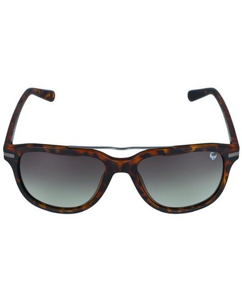 Polarised Sunglasses -  brown-charcoal
