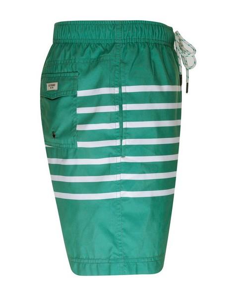 Alfonzo Swim Shorts -  sage