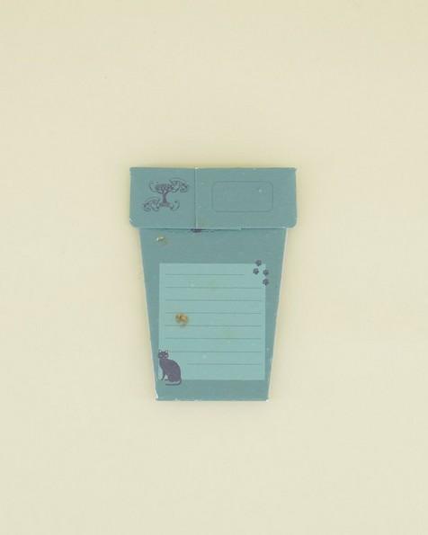 Catnip Pot Card -  assorted