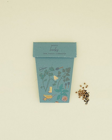 Herb One Pot Card -  assorted