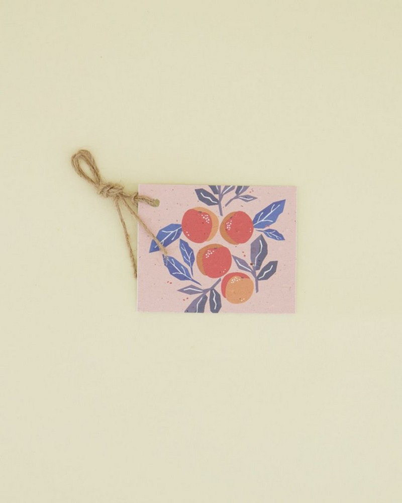 Yuzu Growing Paper Tag -  assorted