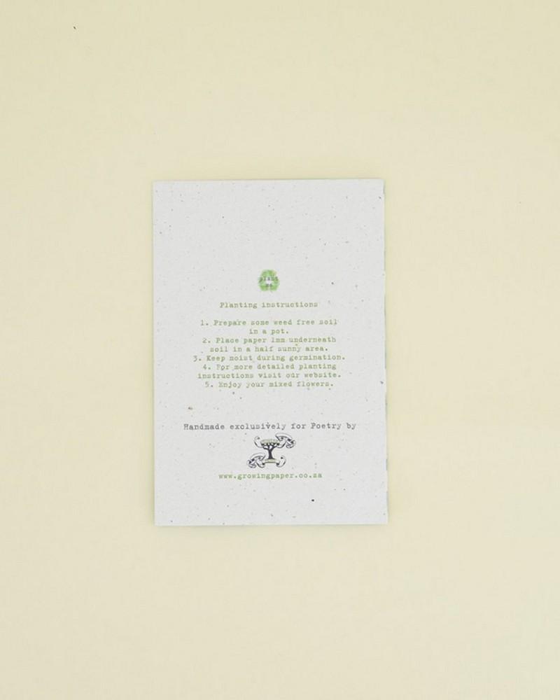Green Jade Growing Paper Card -  green