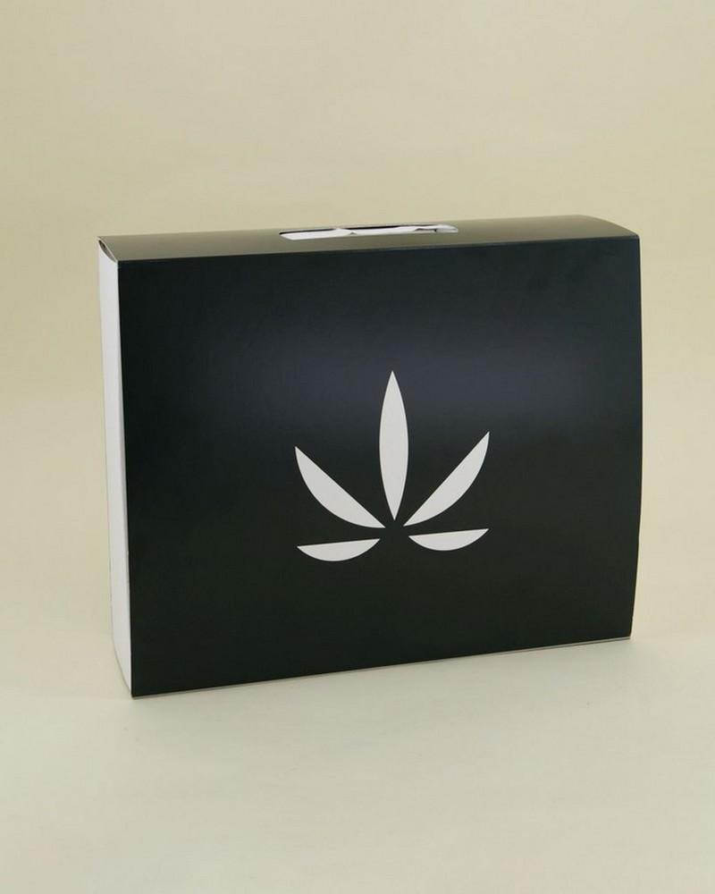 Goodleaf Skincare Rise Kit -  green