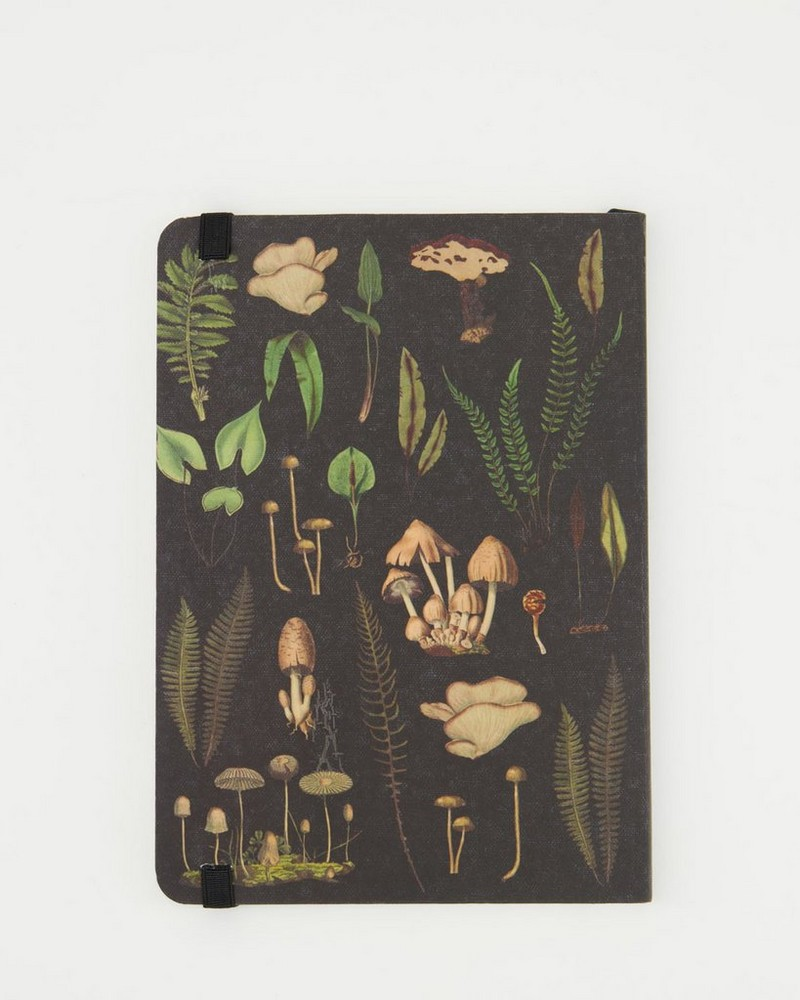 Forest Treasures Notebook -  assorted