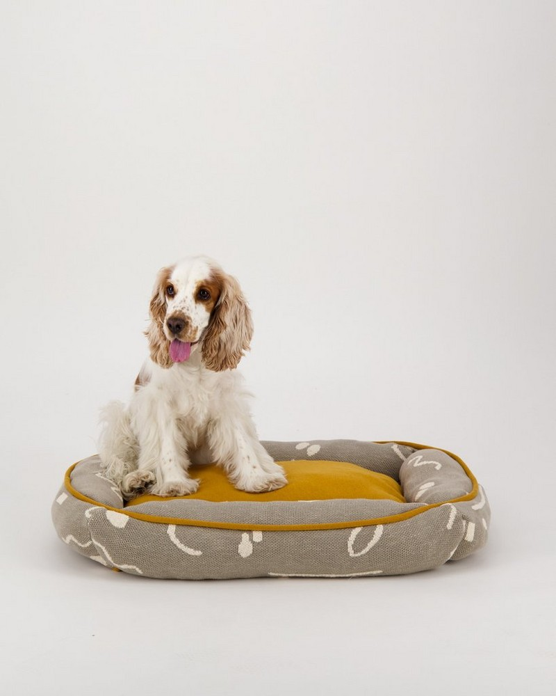 Script Dog Bed -  assorted