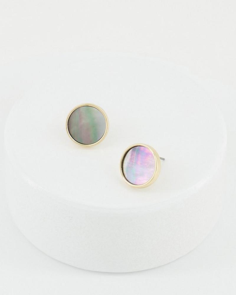 Shell Disk Stud Earrings -  brown