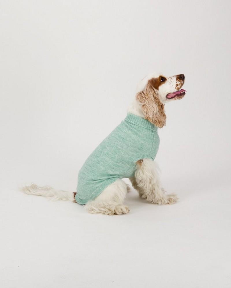 Jordyn Dog Jumper -  lightolive