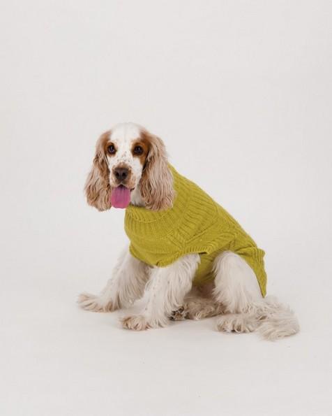 Millie Dog Jumper -  yellow
