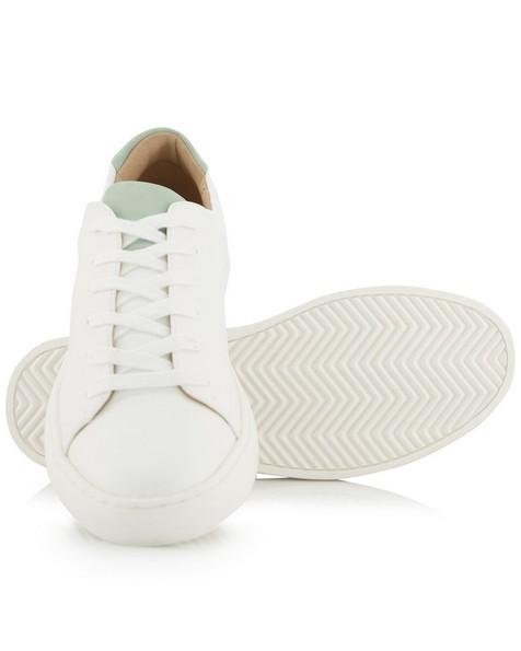 Lola Sneaker  -  white