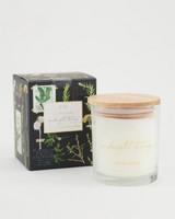 Midnight Botany Candle -  black