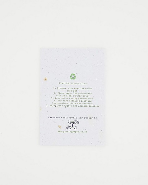 Growing Paper Mum Card -  assorted