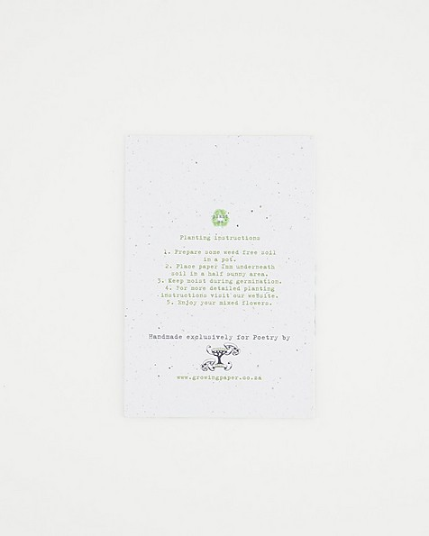 Growing Paper Influential Card -  assorted
