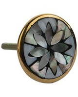 Mother of Pearl & Brass Knob -  grey-gold