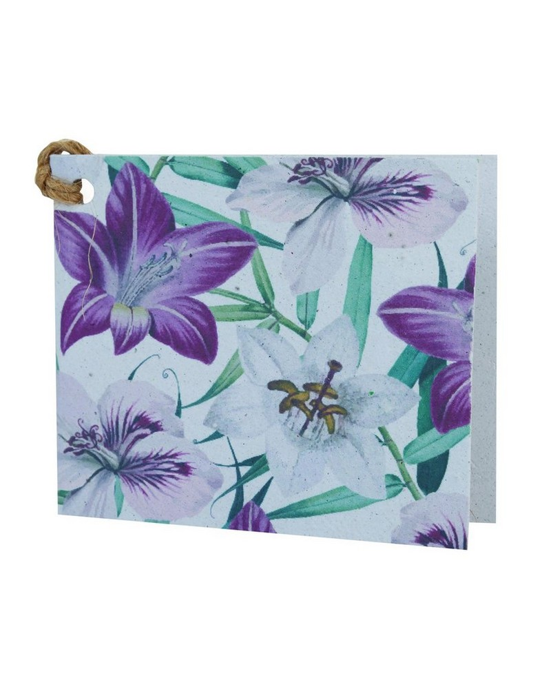 Growing Paper Hibiscus Floral Tag -  assorted