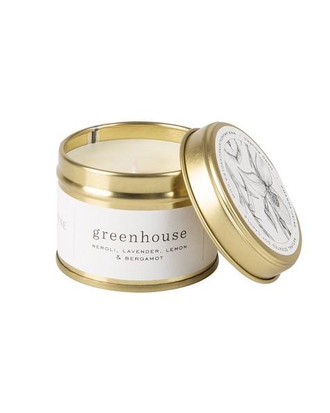 Amanda Jayne Greenhouse Candle in Gold Tin -  white-black